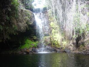 """""""Il pozzo dell'amore"""" così chiamato dagli indigeni, dove si scambiano le promesse d'amore. Questo luogo è all'interno della foresta"""