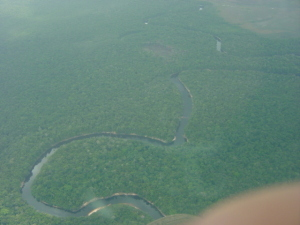 la foresta pluviale sorvolata con il Chessna 22 che ci portò al salto Angel